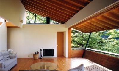 南軽井沢の家 (リビングダイニング 1)
