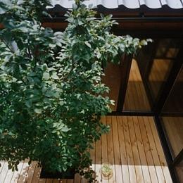 風の家 (中庭)