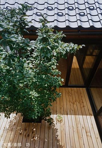 風の家の部屋 中庭