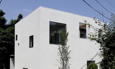 YM house (外観1)