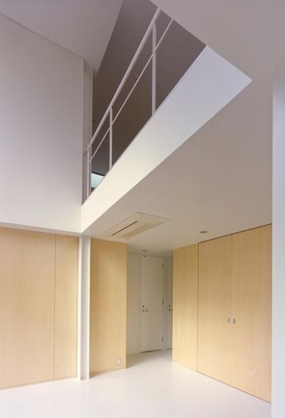1階と2階を繋ぐ空間(撮影:平井広行) (IZ HOUSE)