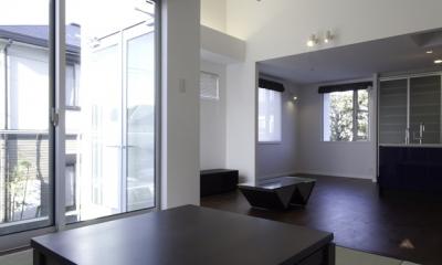 ハイサイドライトハウス(3) (現代的な和室)
