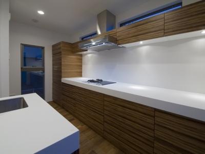 アウトドアリビングの家(4) (キッチン)