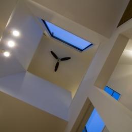 アウトドアリビングの家(4) (天井)
