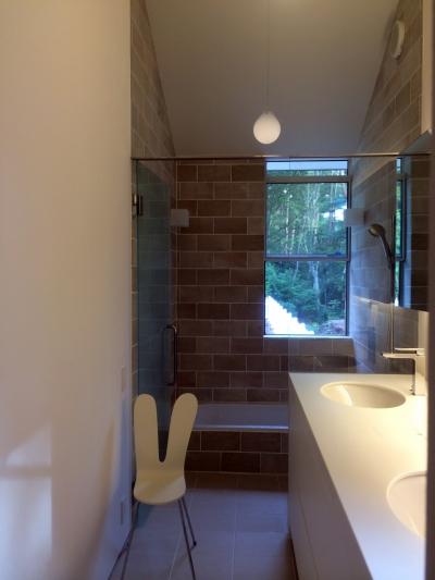 洗面浴室 (木立のいえ)