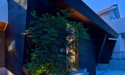 U3-house「回廊の家」 (外観)