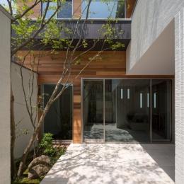 M4-house「重なり合う家」の写真 アウトドア