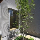 シンプル+ナチュラルな家~2人の好きをMIXした家~の写真 中庭