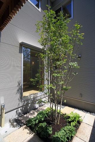 シンプル+ナチュラルな家の部屋 中庭