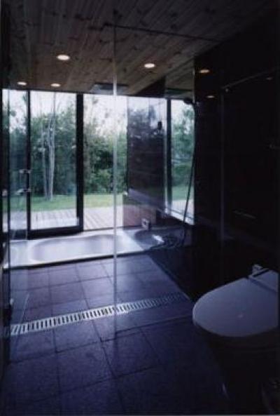軽井沢Yo邸 (バスルーム)