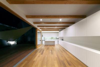 SKR [北側採光の家] (主室(夜間/扉開)~テラスを左手に~)