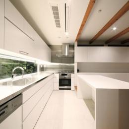SKR [北側採光の家] (キッチンスペース)