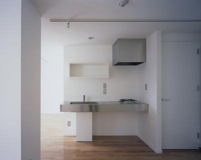 コンパクトなシンプルキッチン (DAA 自由な部屋)