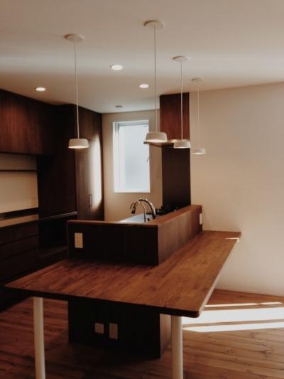 東和の住まい (キッチン 2)