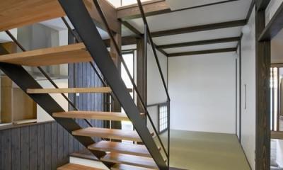 和室・階段|公園を望む家