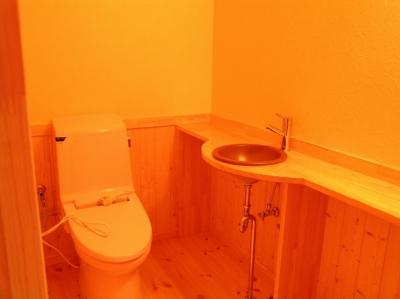 傾斜のある草原に建つ家 (トイレ)