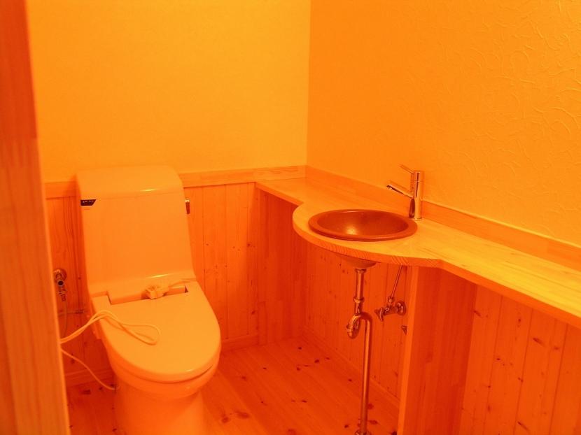 傾斜のある草原に建つ家の部屋 トイレ