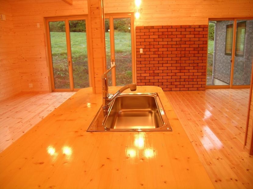 傾斜のある草原に建つ家の部屋 キッチン 1