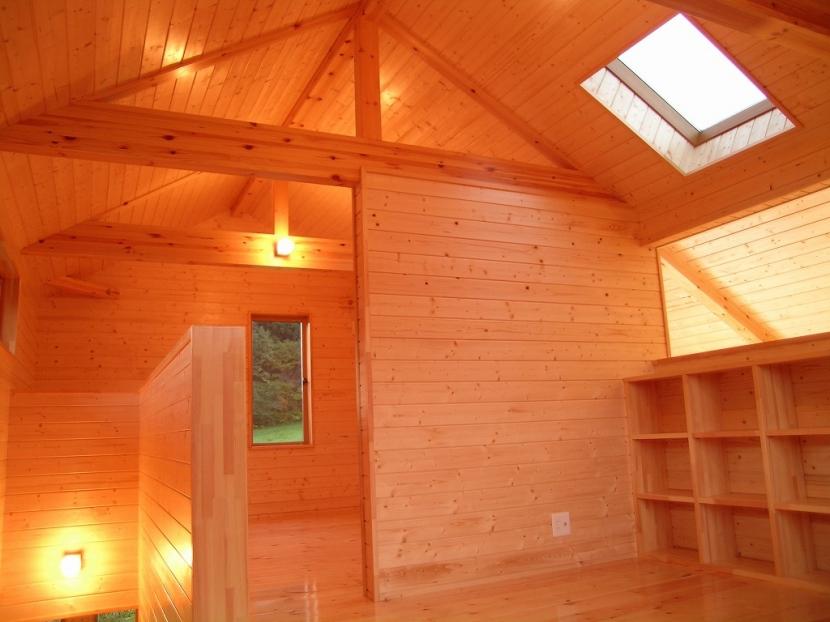 傾斜のある草原に建つ家の部屋 リビング 4