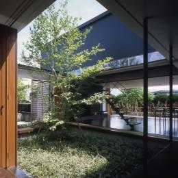 回廊のある家 (中庭)