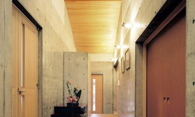 混構造の家 (玄関ホール)