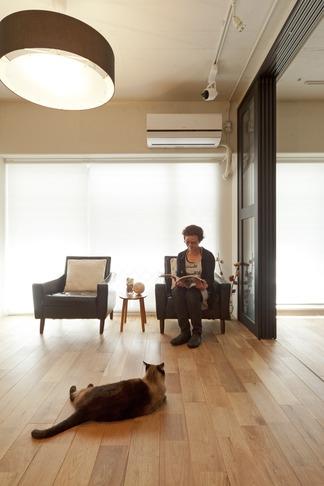 白いモルタル塗装はカフェよりカフェに?!人も集まり、猫も気持ちよくなるリノベーション (リビングダイニング2)