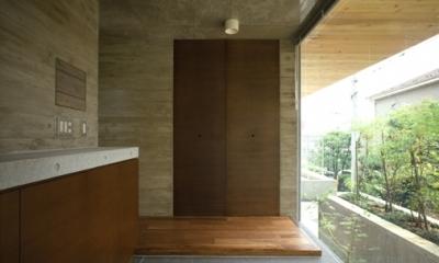 代々木西原の家 (玄関(撮影:淺川敏))