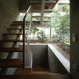 代々木西原の家 (階段(撮影:淺川敏))