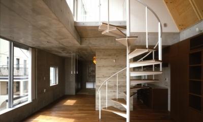 代々木西原の家 (2階から3階への螺旋階段(撮影:淺川敏))