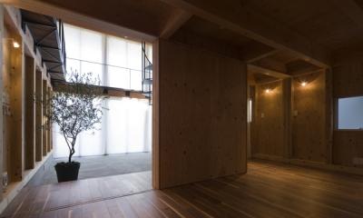 1階から眺めるエントランスホール(撮影:淺川敏)|和賀材木座の家 — 空(くう)の箱 —