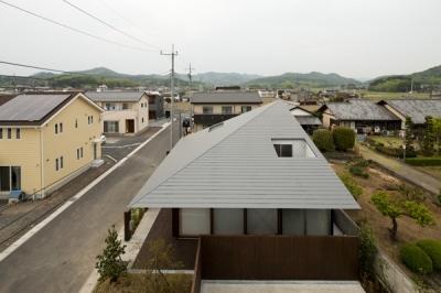 外観-屋根(撮影:淺川敏) (佐野の大屋根)