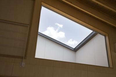 窓(撮影:淺川敏) (佐野の大屋根)