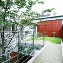 浅草の家―2階にある庭の写真 居間から2階の庭を見る