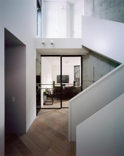 階段ホール (TN-house)