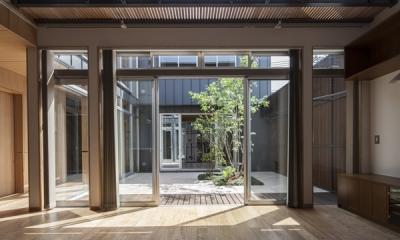 上大岡の家 (リビングから眺める中庭(撮影:淺川敏))