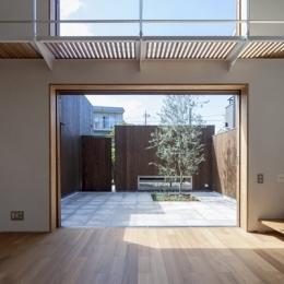 狛江の家 (リビングから眺める中庭(撮影:淺川敏))