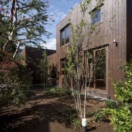 狛江の家 (廊下側の庭(撮影:淺川敏))