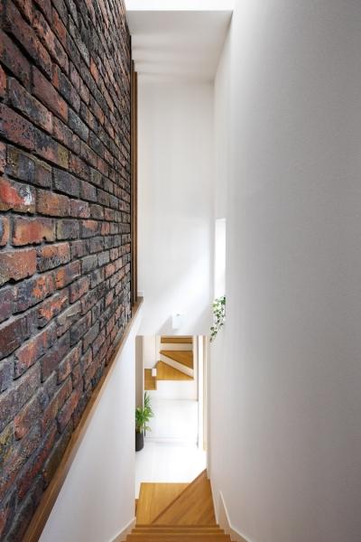 階段 (清潔ヴィンテージ)