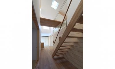 見渡しの家 (階段)