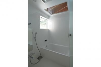 浴室(撮影:鳥村鋼一) (陽傘の家)