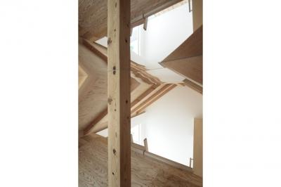ロフト屋根にミラーを設置(撮影:鳥村鋼一) (石神井台の家)