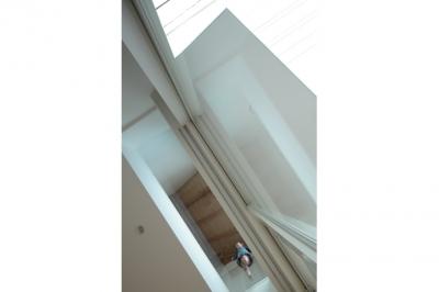 リビングからベッドルームのガラス床を見上げる(撮影:鳥村鋼一) (石神井台の家)
