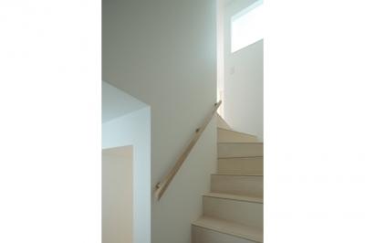 階段(撮影:鳥村鋼一) (石神井台の家)