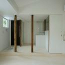 池田雪絵+大野俊治の住宅事例「wooden forest apartement」