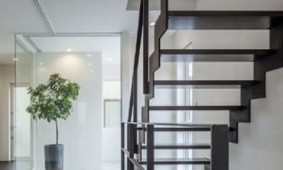 階段2(撮影:藤村泰一)|卯之町の家