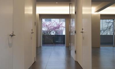 HMR [テラスの家] (玄関)