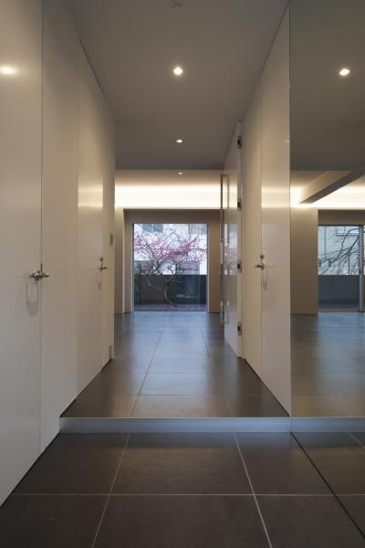 玄関 (HMR [テラスの家])