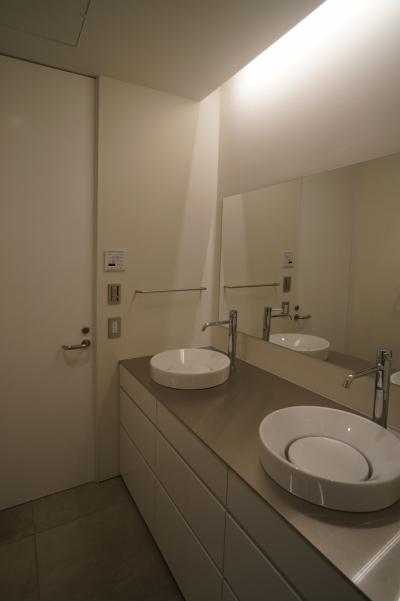 洗面化粧室 (HMR [黒床の家])