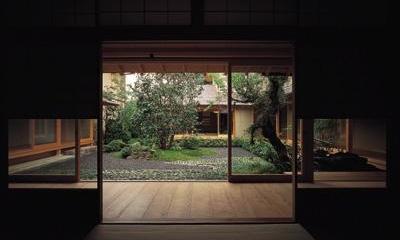 和室から中庭を眺める|藪椿の家