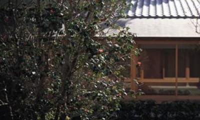 藪椿の家 (中庭の藪椿)